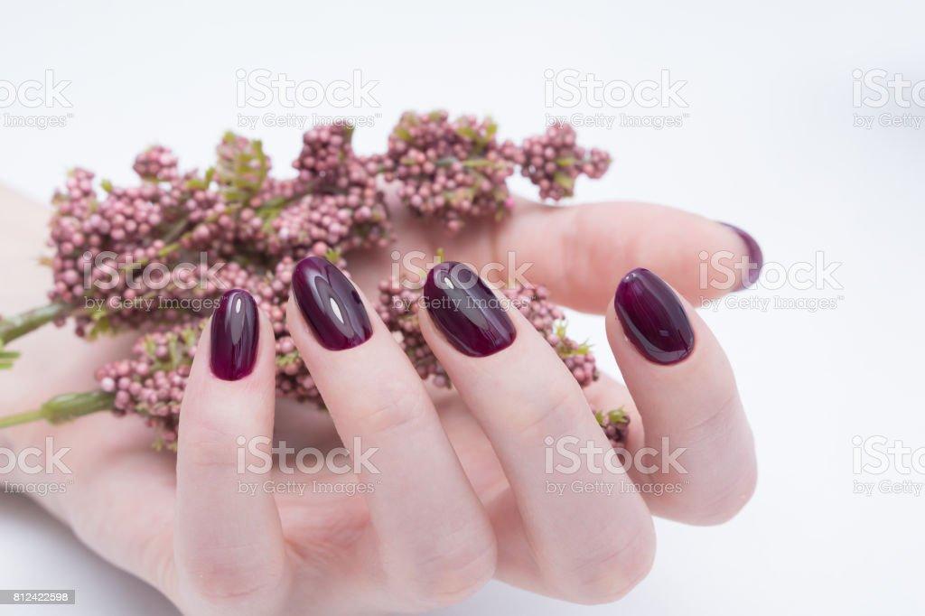 Beautiful manicure and nail art. Natural nails and gel polish.