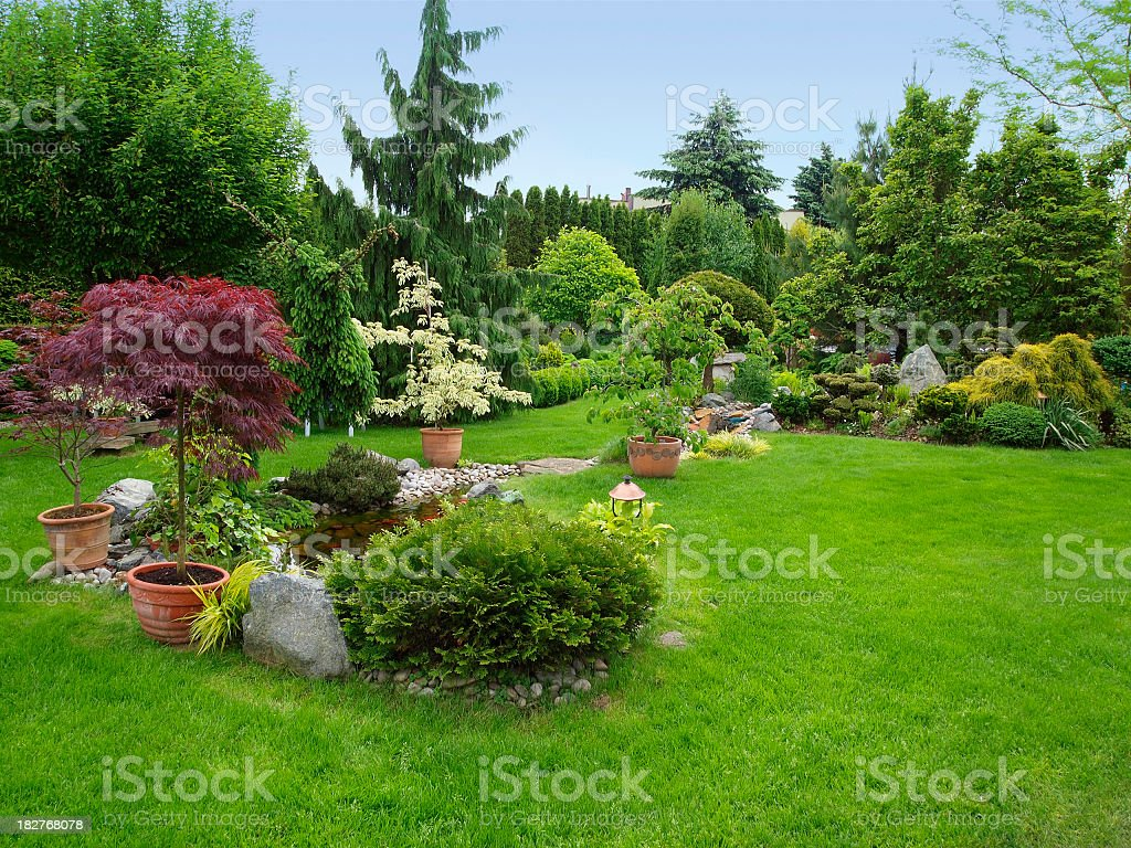 Beautiful manicured garden with bushes, trees, stones, pond, juicy grass stock photo