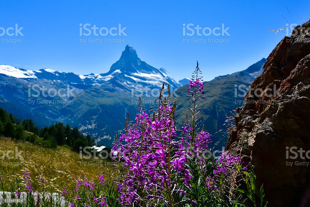 Beautiful Matterhorn in Zermatt, Switzerland stock photo