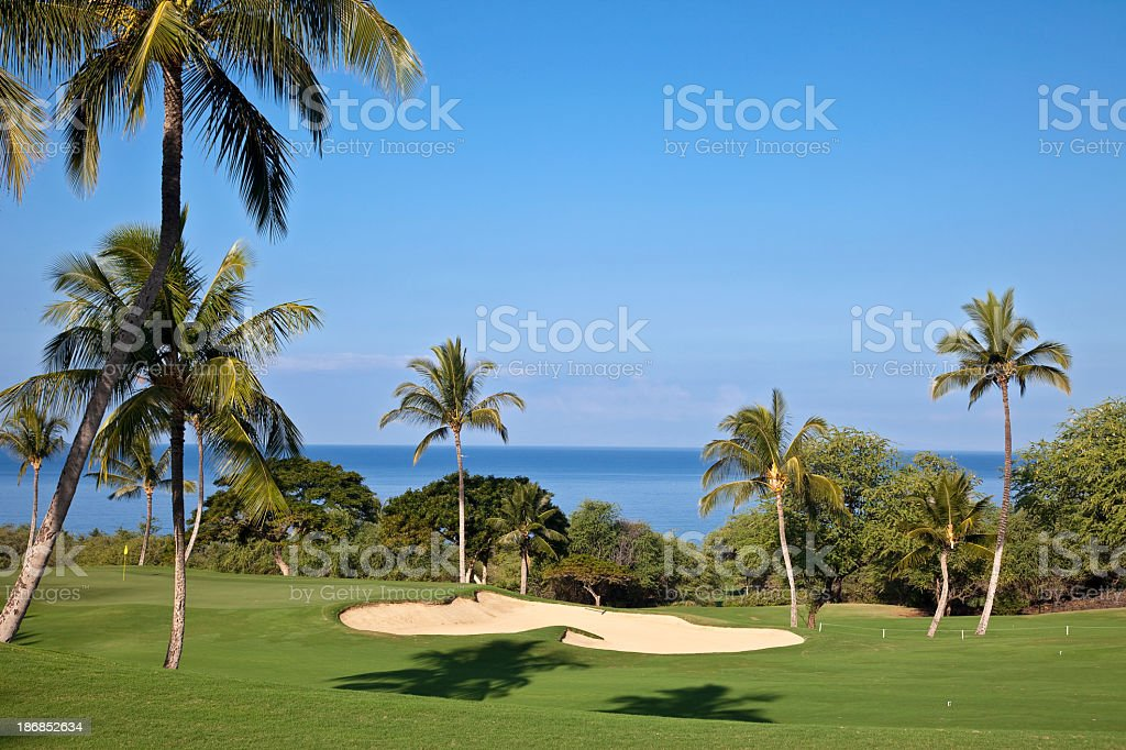 Beautiful Maui Golf course surrounded by palm trees royalty-free stock photo