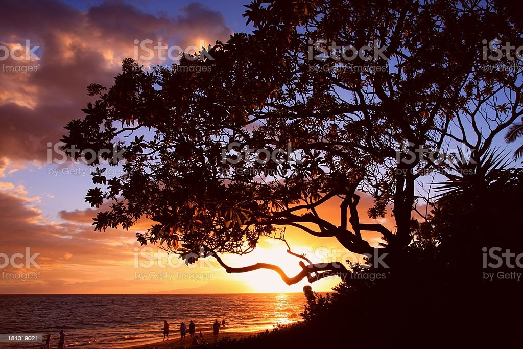Beautiful Maui Hawaii Pacific ocean beach sunset scenic stock photo