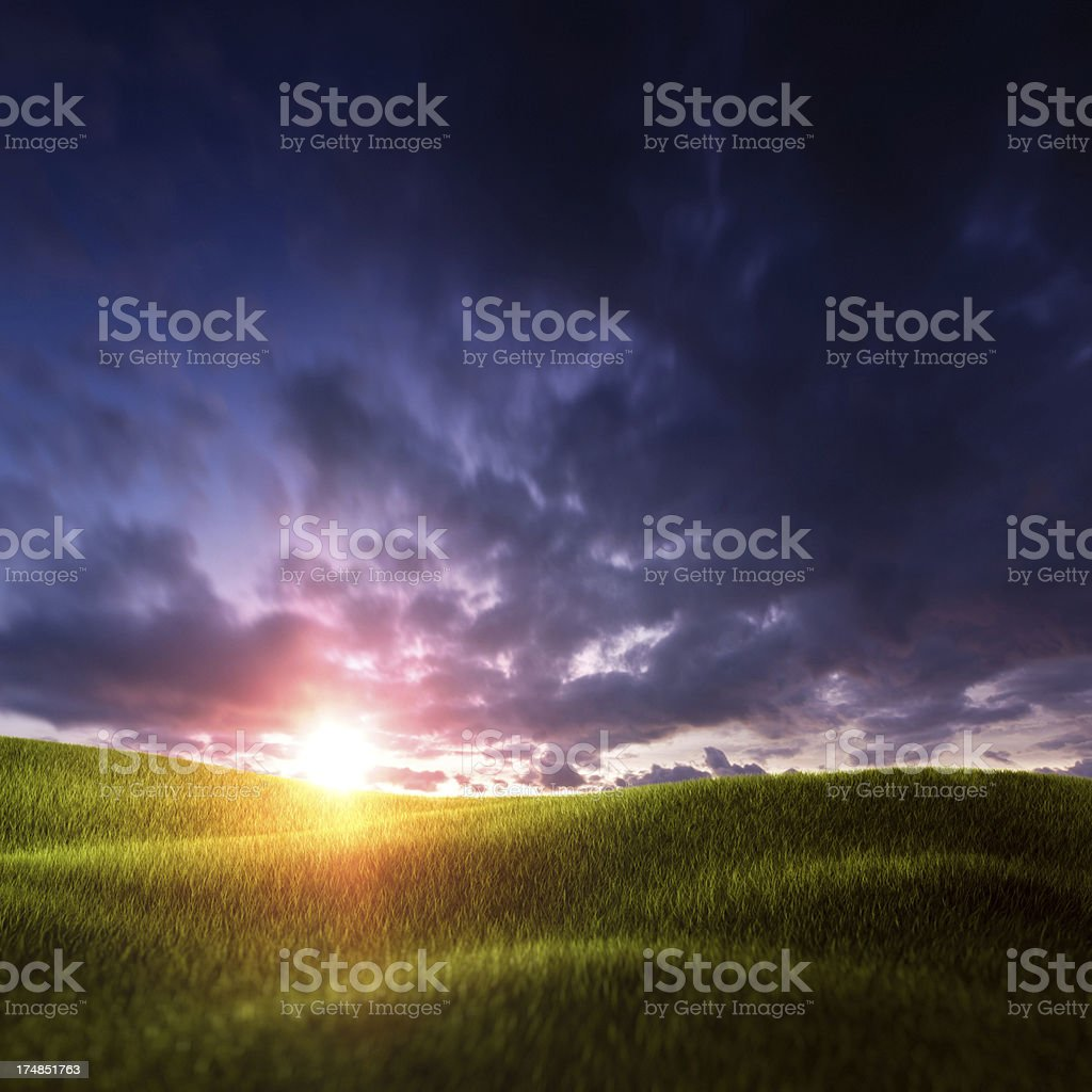 Beautiful meadow in the evening royalty-free stock photo