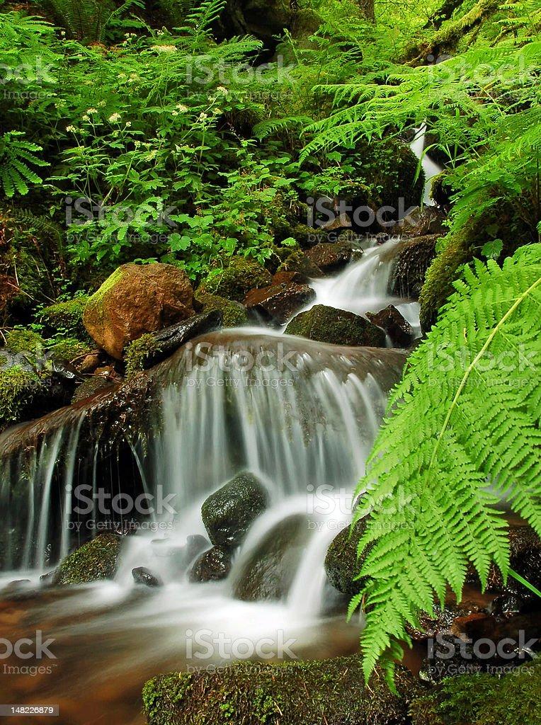 Beautiful Miniature Waterfall royalty-free stock photo