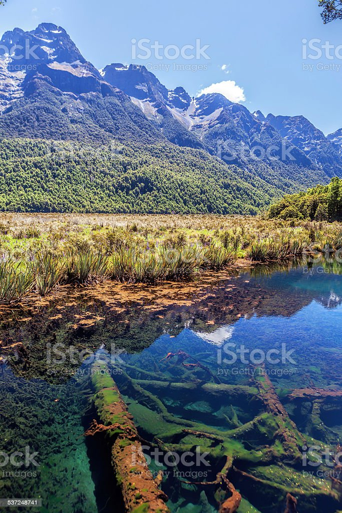 Beautiful Mirror Lakes, off Milford Sound Highway, Fiordland, Ne stock photo