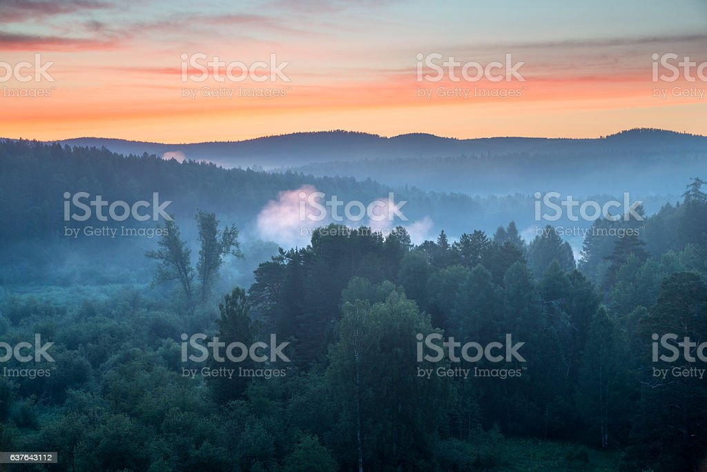 beautiful misty dawn in the Deer Springs Nature Park stock photo