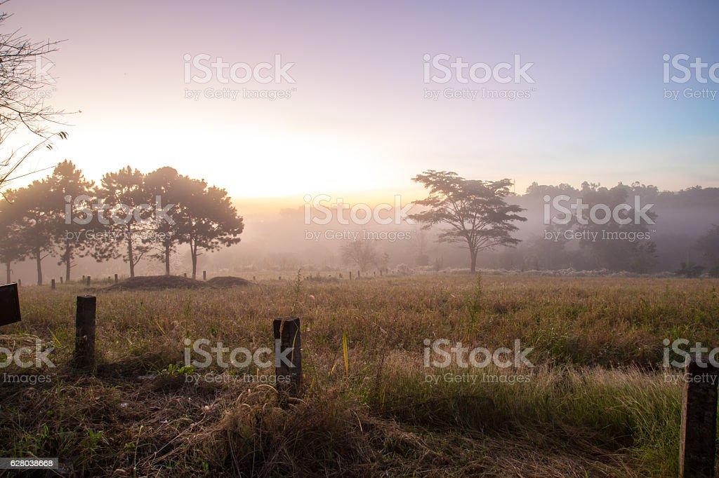 Beautiful misty morning sunrise stock photo