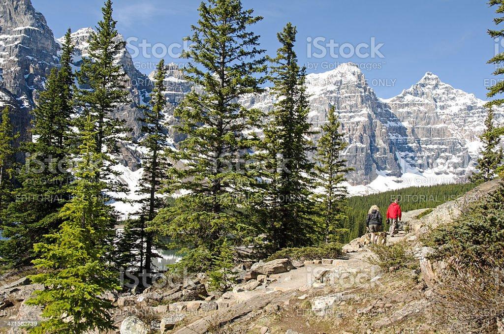 Beautiful Moraine Lake Trail royalty-free stock photo