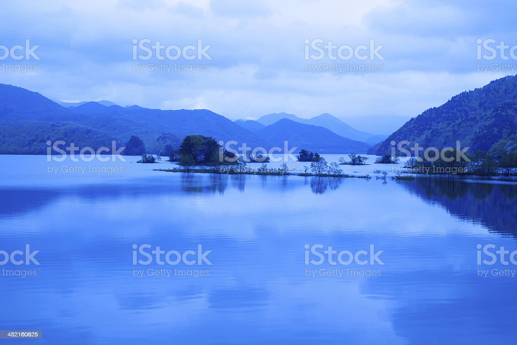 beautiful morning and tree on the Lake royalty-free stock photo