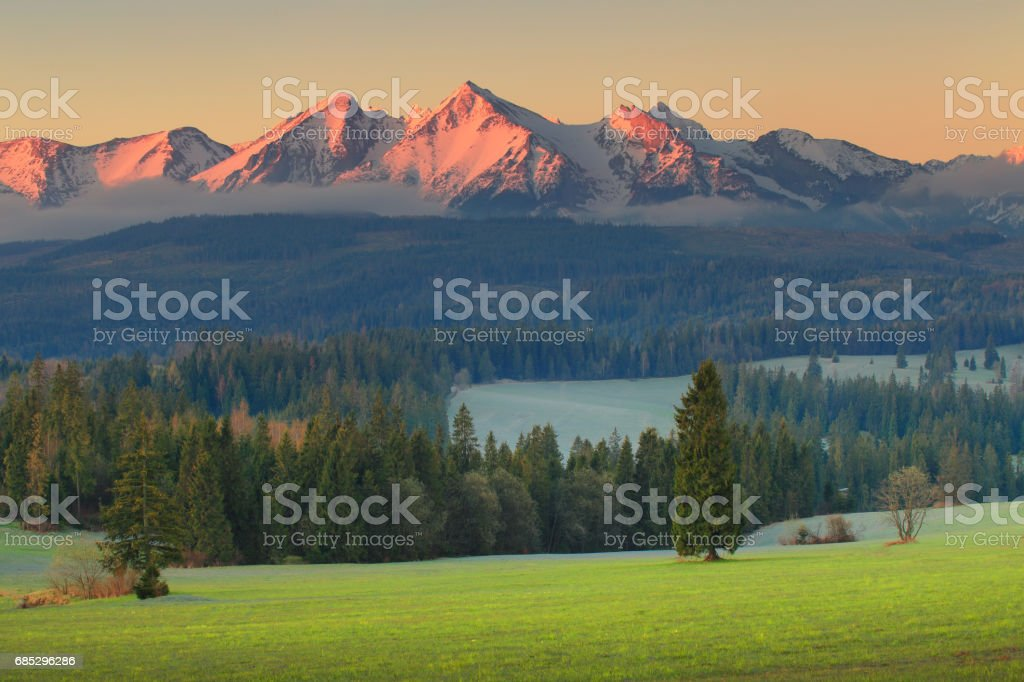 Beautiful morning at Alpine foothill stock photo