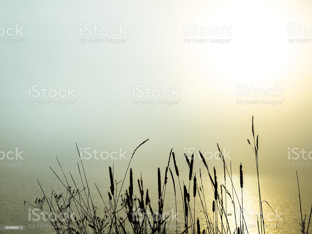 beautiful morning fog over a lake stock photo