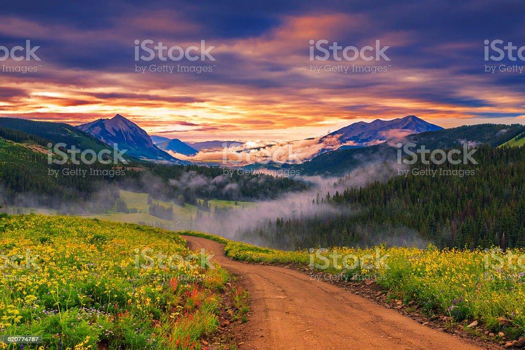 beautiful morning stock photo