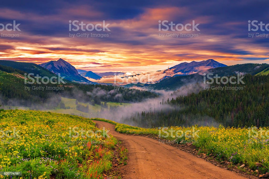 beautiful morning stock photo