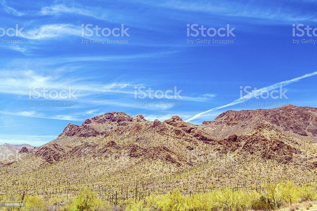 beautiful mountain desert landscape with cacti royalty-free stock photo