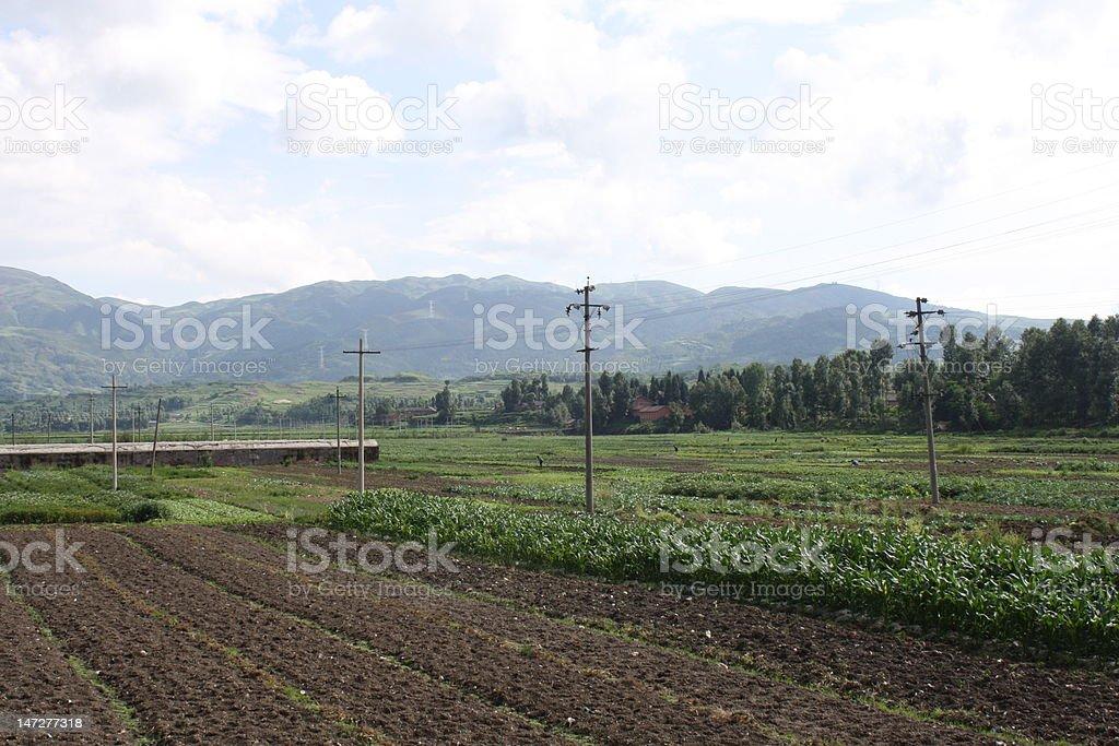 Beautiful mountain - Farming in a sunny day stock photo