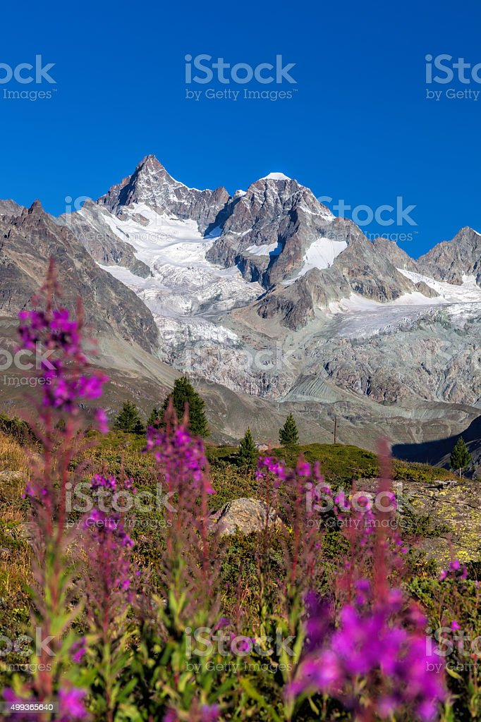 Beautiful mountain Matterhorn in Swiss Alps stock photo