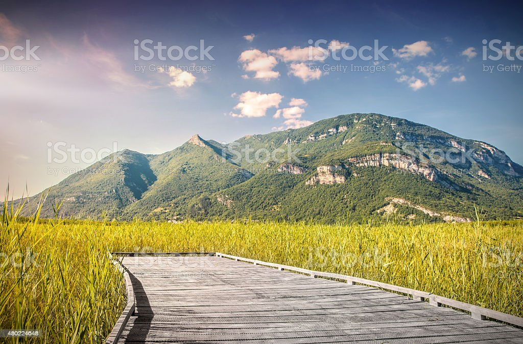 Beautiful mountain scenic with wooden footpath in field under sunset stock photo