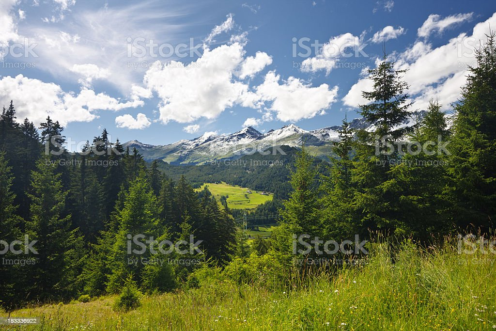 Beautiful Mountain Valley In Summer royalty-free stock photo