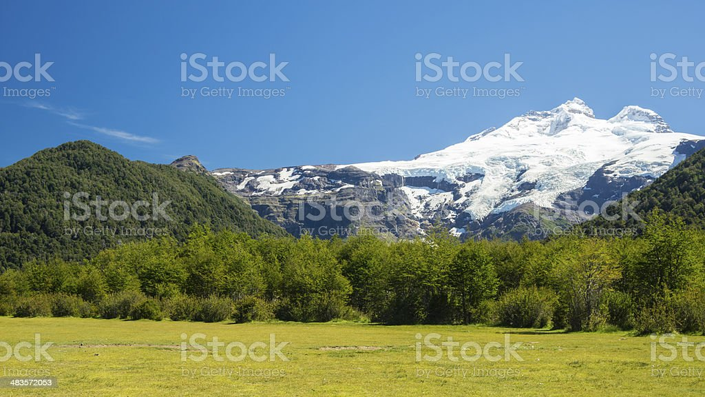 Beautiful mountain with snow and forest royalty-free stock photo
