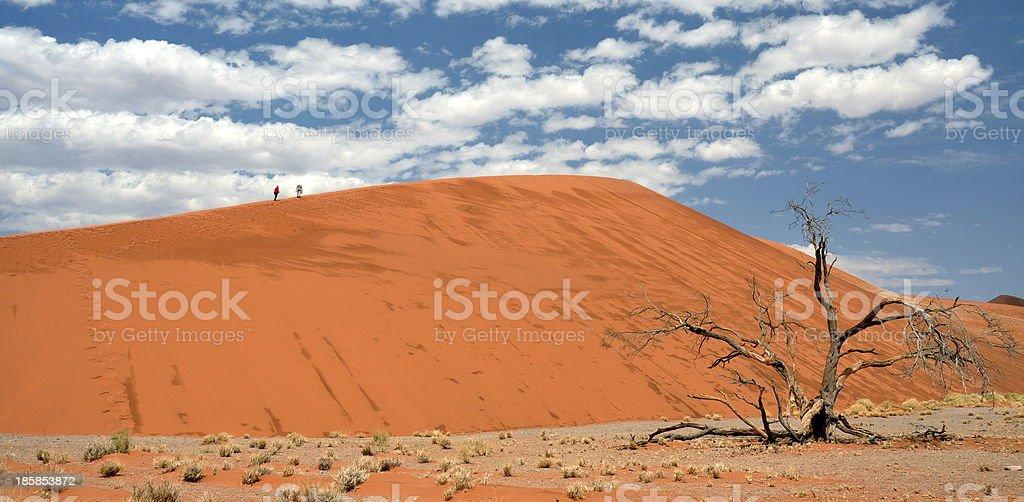 Beautiful Namib desert dunes stock photo