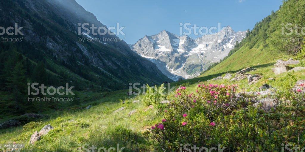 Beautiful natural landscape as a panorama stock photo