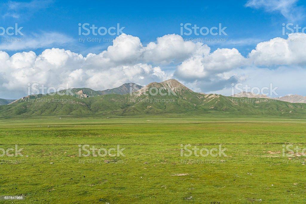 beautiful natural scene of qinghai lake stock photo