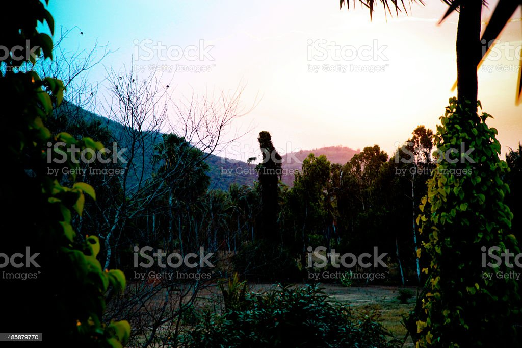 beautiful natural sunset stock photo