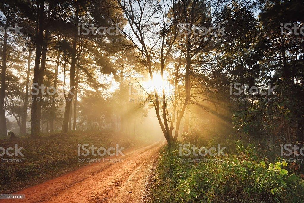 Wunderschöne Natur und Hintergründe Lizenzfreies stock-foto