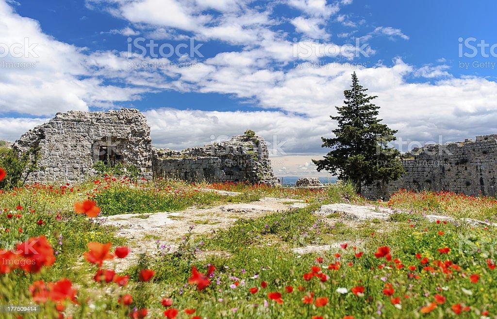 Beautiful nature landscape royalty-free stock photo