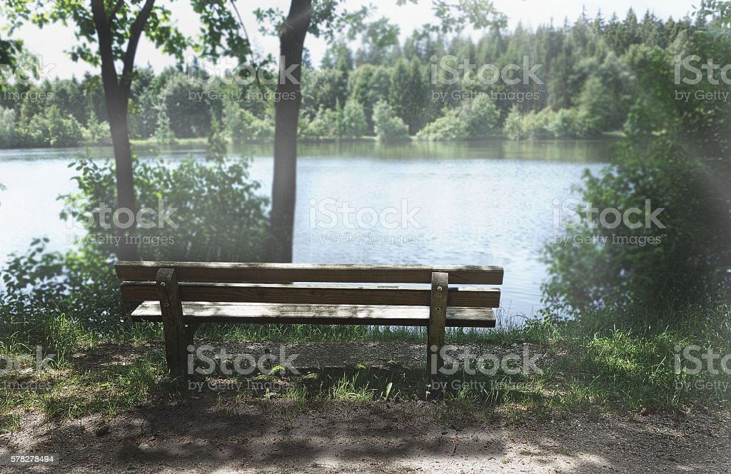 beautiful nature wooden bench at a wonderful day photo stock photo