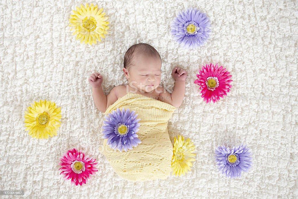 Beautiful Newborn With Flowers royalty-free stock photo