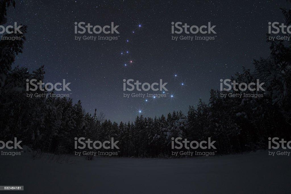 Beautiful night winter landscape with the stars stock photo