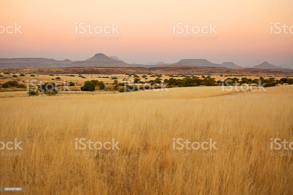 Beautiful Northern Namibian Savannah Landscape at Sunset stock photo