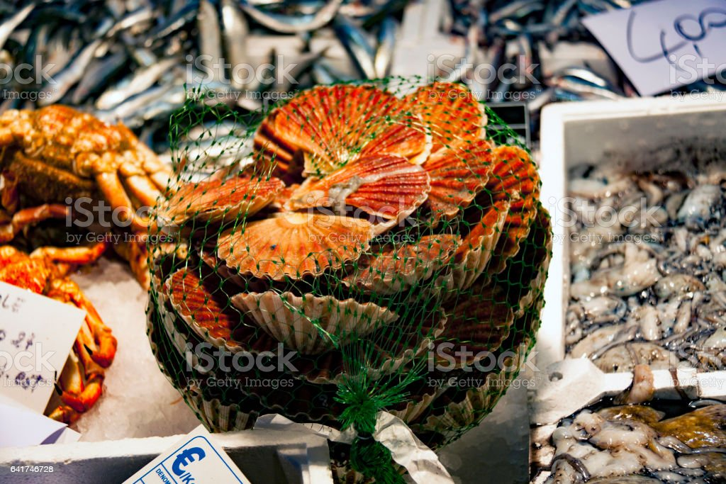 Beautiful orange clams, cockles At Fish Market in Italy stock photo