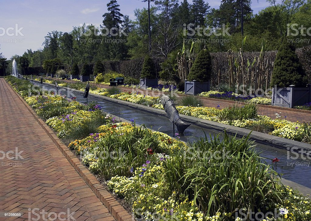 Beautiful Ornamental southern Garden royalty-free stock photo