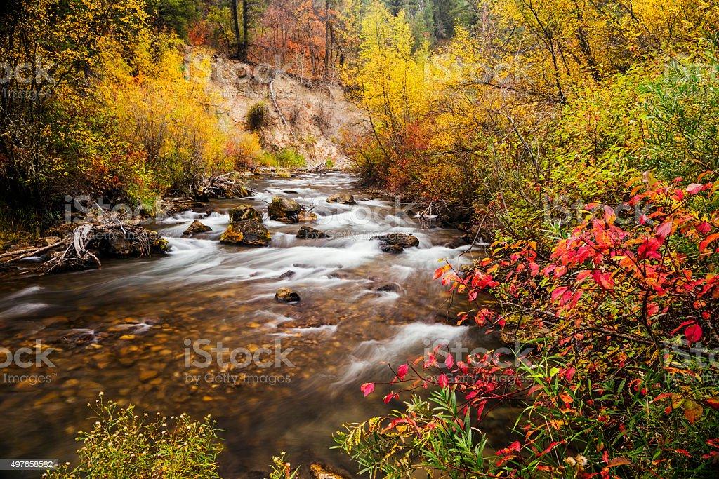 Beautiful Palisades Creek Autumn Glory in Idaho stock photo