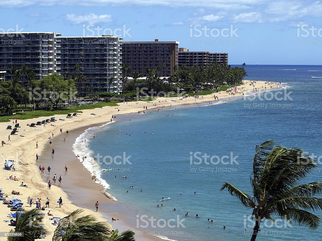 Beautiful palm trees in Kaanapali Beach, Maui stock photo
