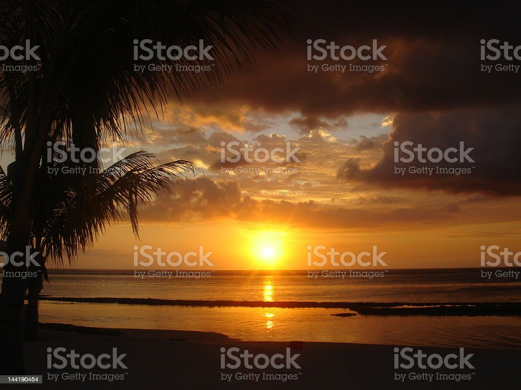 Beautiful paradise beach sunset through palm trees royalty-free stock photo