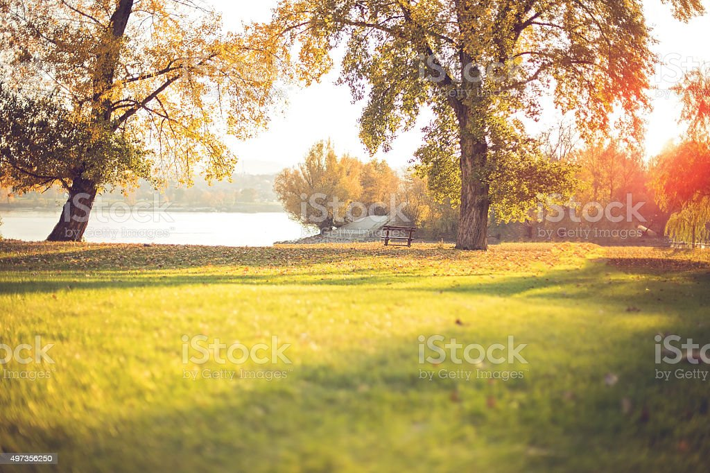 Beautiful park stock photo
