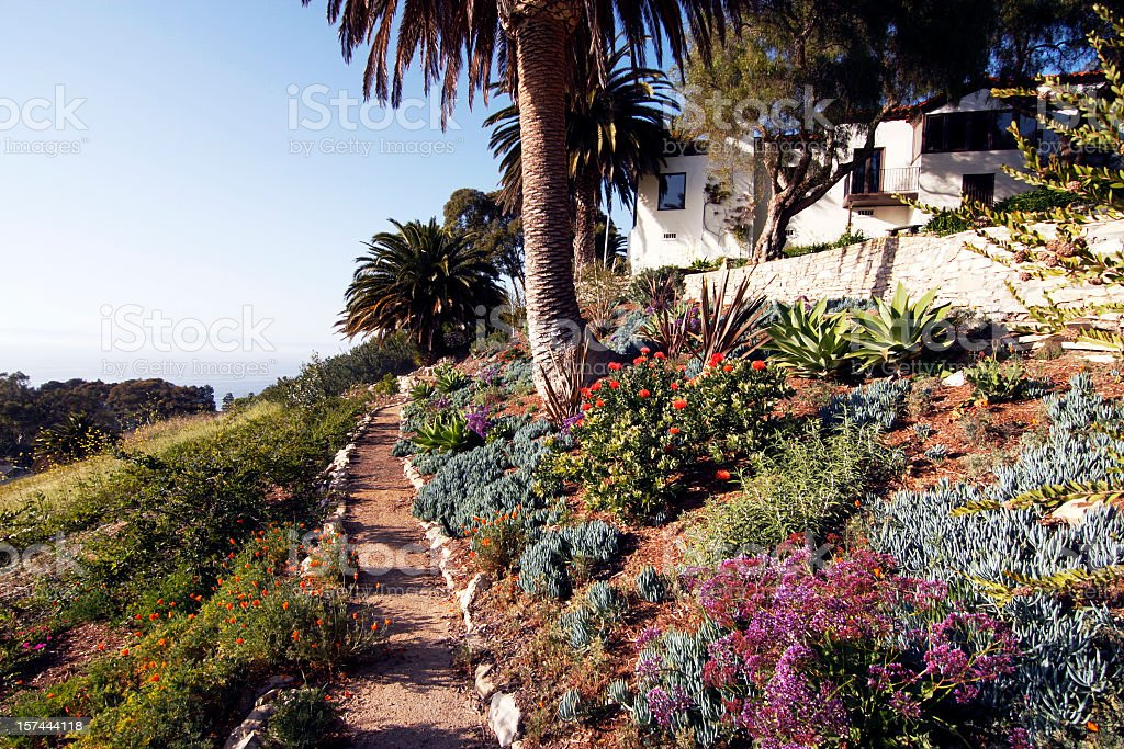 Beautiful path with flowers aside royalty-free stock photo