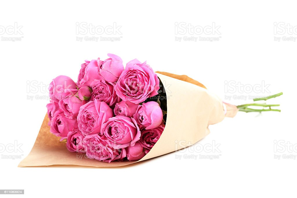 Beautiful pink roses isolated on a white stock photo
