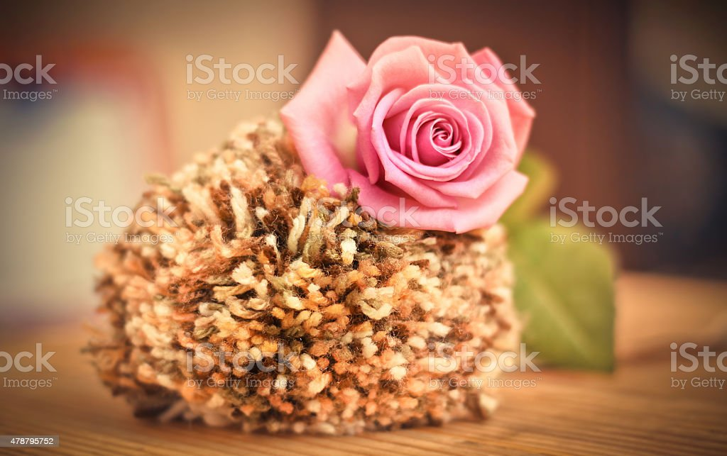 Beautiful pink roses on a soft background stock photo