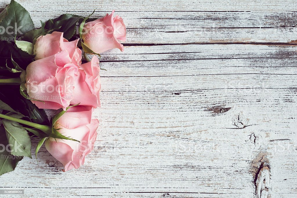 Beautiful pink roses on wooden background with copy space stock photo