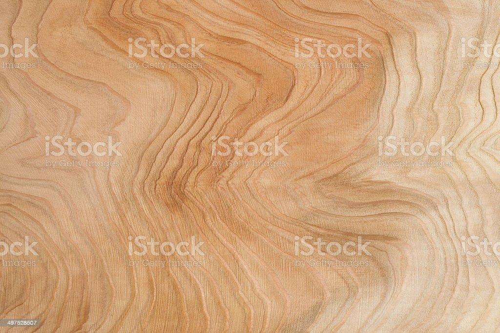 Beautiful plate of cedar wood stock photo