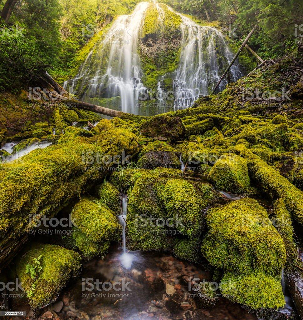 Beautiful Proxy falls in mist, Oregon stock photo