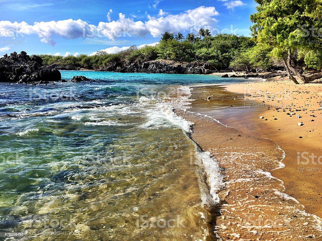 Beautiful Puako stock photo