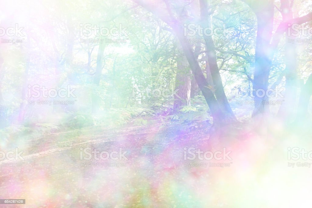 Beautiful rainbow sunlight woodland stock photo