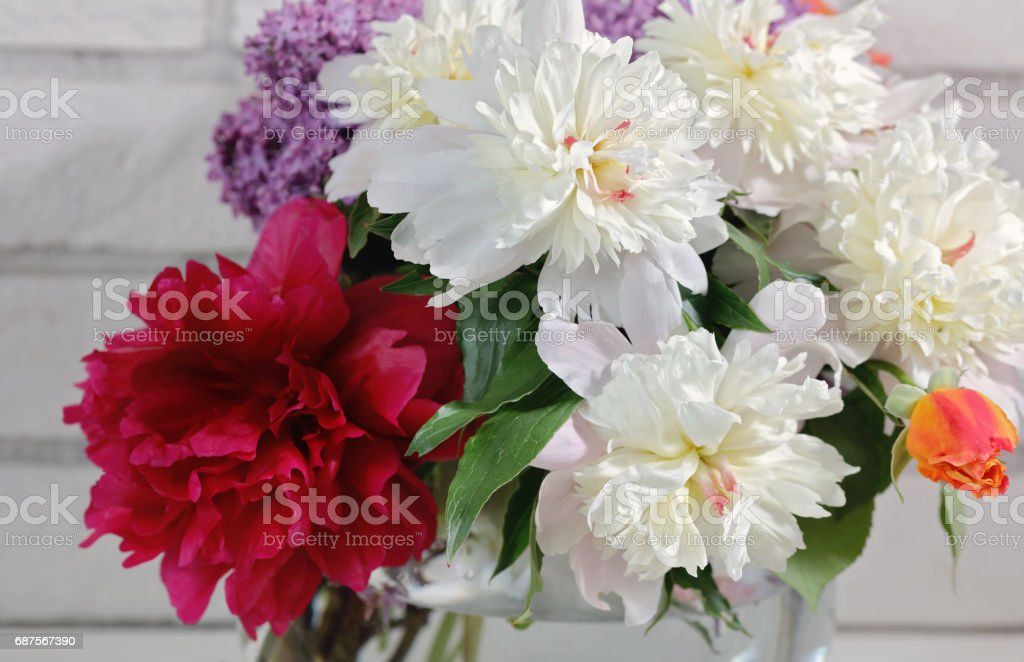 Beautiful red and white peony bouquet. Springtime background stock photo