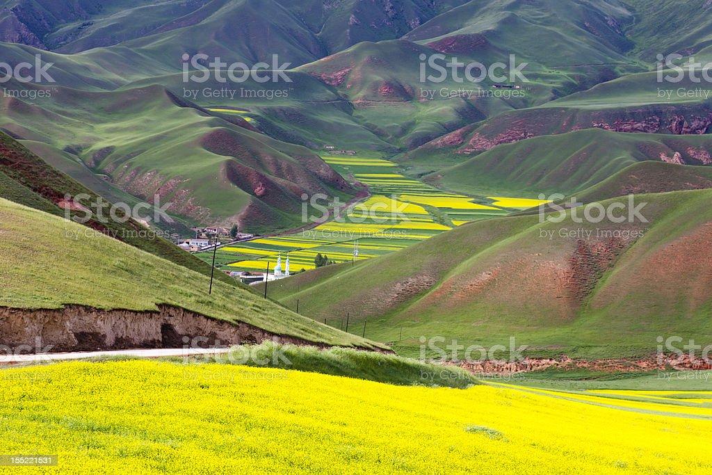 beautiful red mountain and yellow rape field stock photo