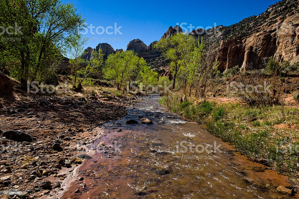 Beautiful Red Rock Canyon in Capitol Reef stock photo