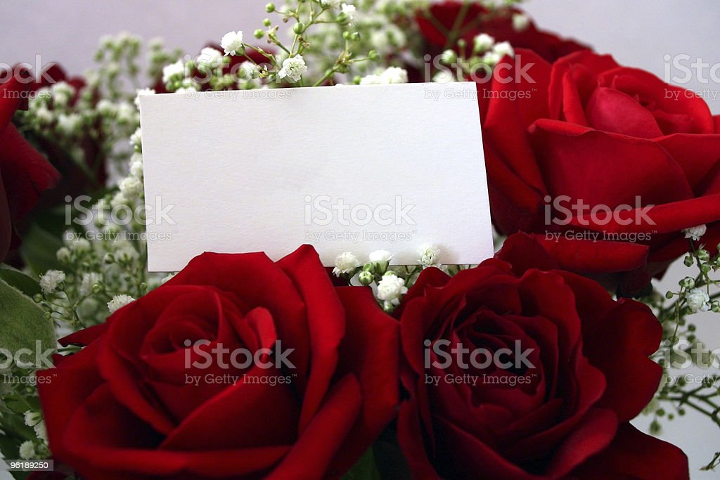 Beautiful red roses with a blank message tag stock photo